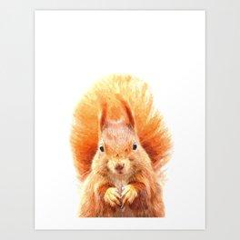 Squirrel Portrait Art Print
