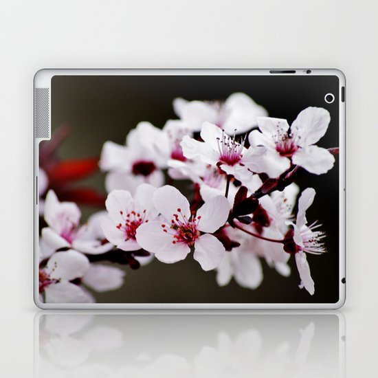 Signs of Spring 2 Laptop & iPad Skin