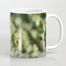 Cactus Bud Focused Ektar  Coffee Mug