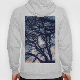 Mystic trees Hoody