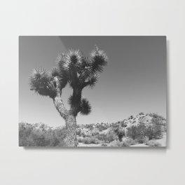 A Tree Named Joshua Metal Print