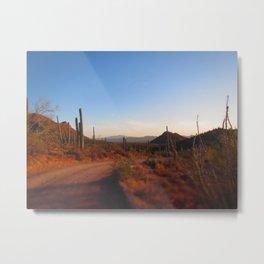 Cactus Drive Metal Print