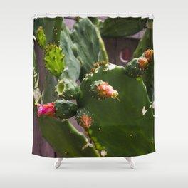 Summer Cactus in Flower Shower Curtain