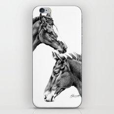 Foal Friends iPhone & iPod Skin