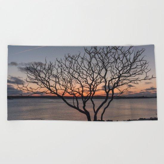 Sunset tree Niles Beach Beach Towel