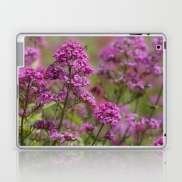 Purple Blooms Laptop & iPad Skin