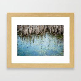 nature 2 - pond Framed Art Print