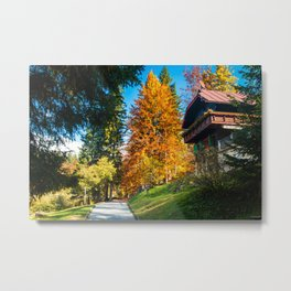 trekking path in an autumn day in the alps Metal Print