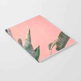 Palm on pink   Botanical photography print   Spain travel photo art Notebook