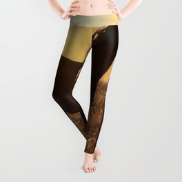 Wyoming Clydesdale Leggings