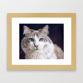 Hiro the Cat Framed Art Print