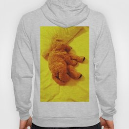 Love is... Teddy dog Hoody