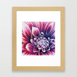 Pink Dahlia by Marie Antuanelle Framed Art Print