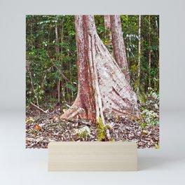 Buttress root in the rainforest Mini Art Print