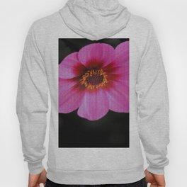 Pink Dahlia Hoody