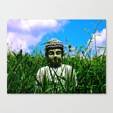 Buddha Looks Through Grass Canvas Print