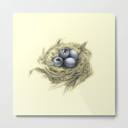 Blue Eggs in a Nest Metal Print