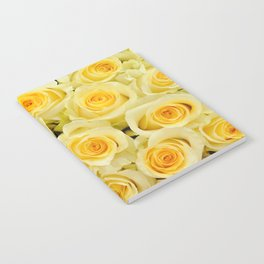 soft yellow roses close up Notebook