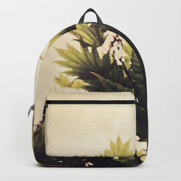 full moon maple no.2 Backpack