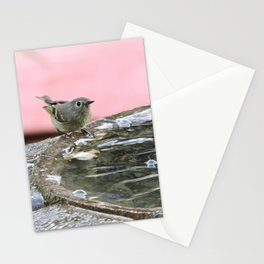 Kinglet at the Basin Rim Stationery Cards