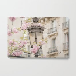 Spring Blooms in Paris Metal Print