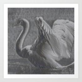 Swan I Art Print