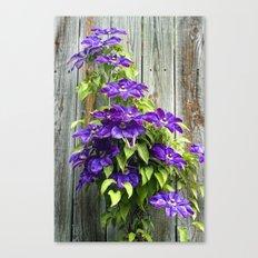 Climbing Purples Canvas Print