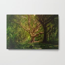 Huge Tree Middle Of Forest Metal Print