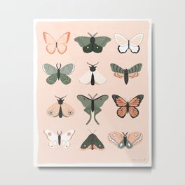 Butterflies + Moths Metal Print