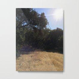 WILD VII Metal Print