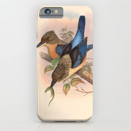 Dacelo Tyro Kingfisher Vintage Bird of Asia iPhone Case