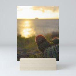 Cactus in the Sunset - Sint Maarten Mini Art Print
