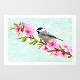 Chickadee Bird on a Branch Art Print
