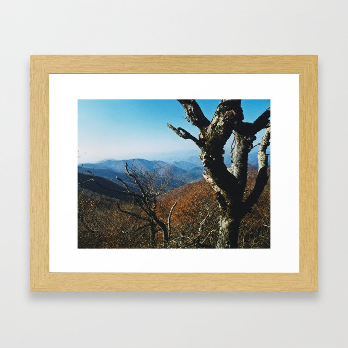 View from the Craggies Framed Art Print