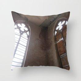 Entropy opulence Throw Pillow