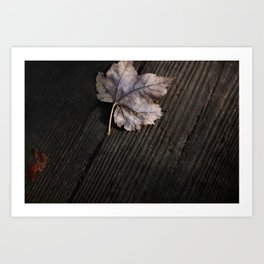 the lifelines of fall 2 Art Print