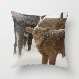 Calves in The Snow Throw Pillow