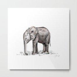 Kuishi, the orphan elephant. Metal Print