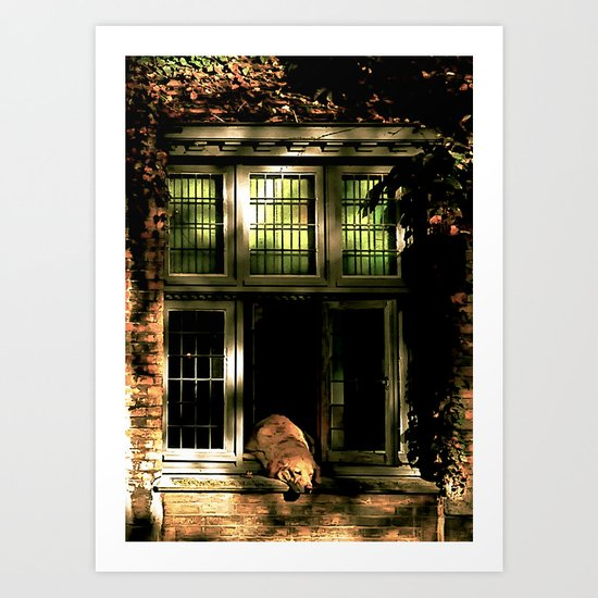 A nap in the sun Art Print
