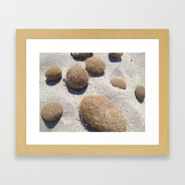 HAIRY COLLECTION (22) Framed Art Print