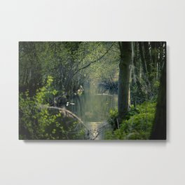 Enchanted forest II Metal Print