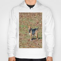 beagle Hoodies featuring Beagle by Frankie Cat