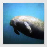 manatee Canvas Prints featuring Manatee by BlueMoonArt