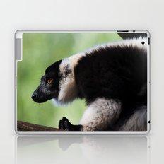 Varecia Variegata II Laptop & iPad Skin