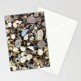 Seashells on the Ring of Kerry Stationery Cards