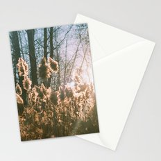 storm king Stationery Cards