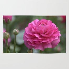Pink Ranunculus Rug