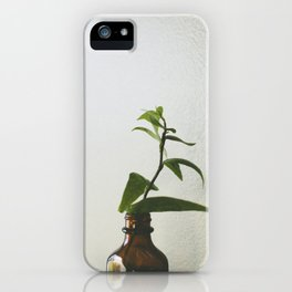 Home #3 iPhone Case