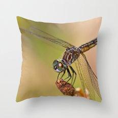 Summer Visitor Throw Pillow