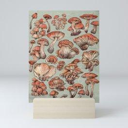A Series of Mushrooms Mini Art Print